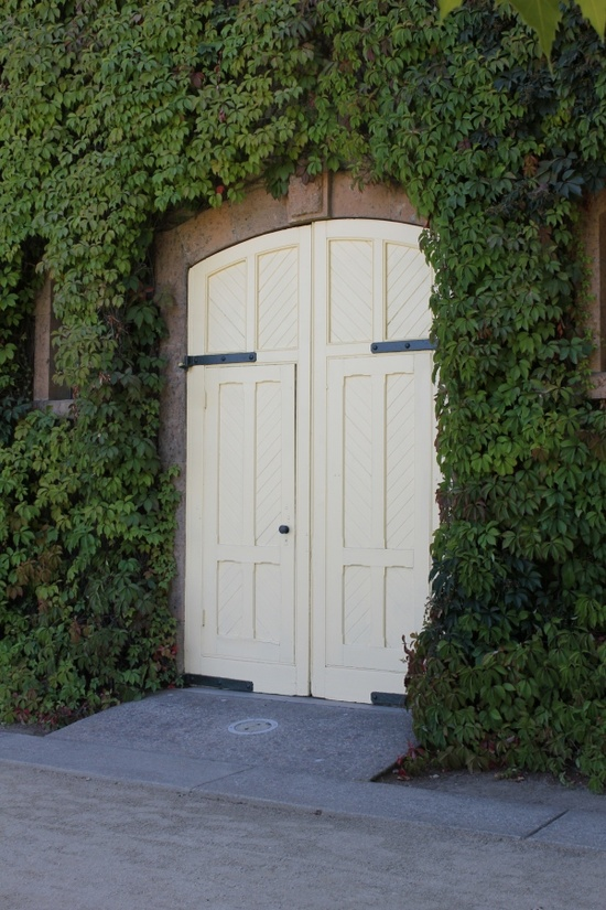 dble doors with greenery